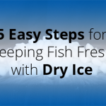 5 Easy Steps for Keeping Fish Fresh with Dry Ice