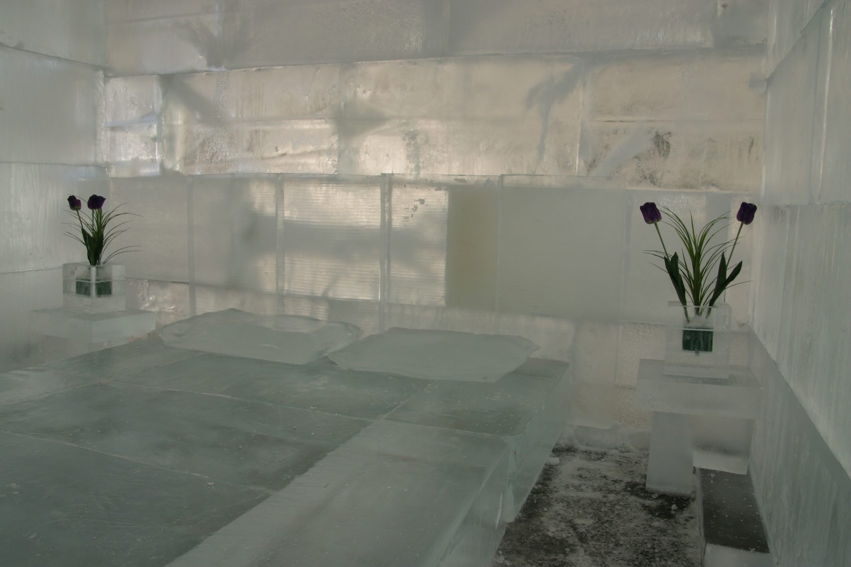 Ice bedroom