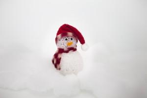 Iceman Holidays